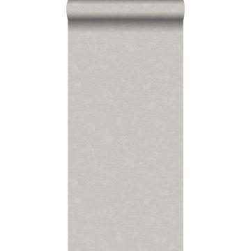 papel pintado liso gris pardo