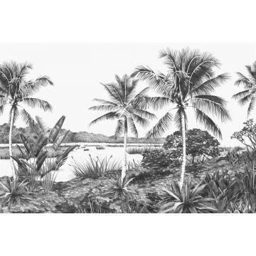 fotomural paisaje con palmeras blanco y negro
