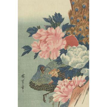 fotomural pavo real y peonías rosa viejo, verde y azul